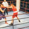 BoxeIsland-Indomabili-III-11